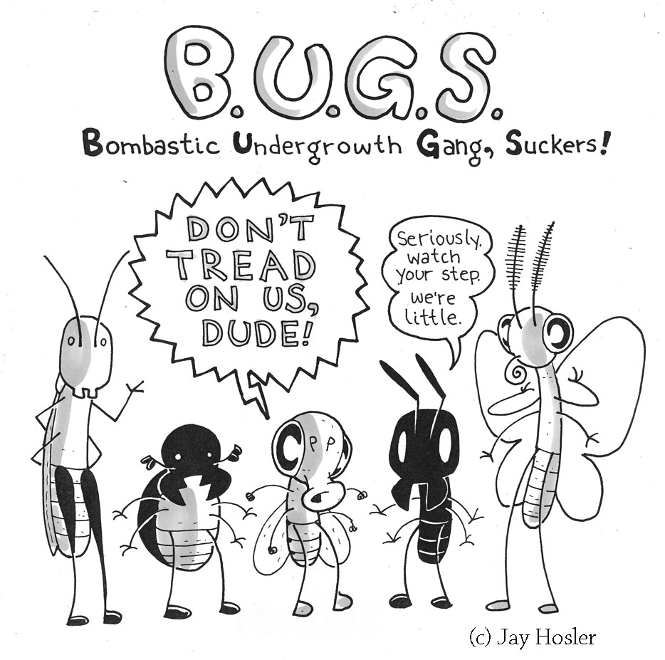 june bug coloring pages - photo#24